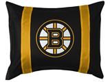 Boston Bruins Sidelines Sham
