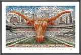 University of Texas Longhorns on the Field Mosaic